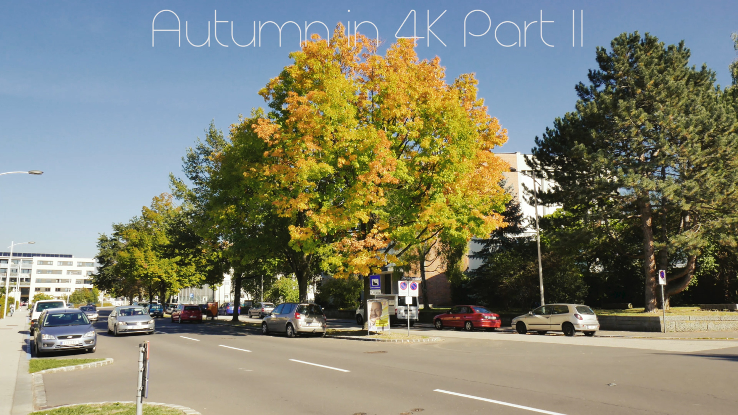Autumn in 4K Part II