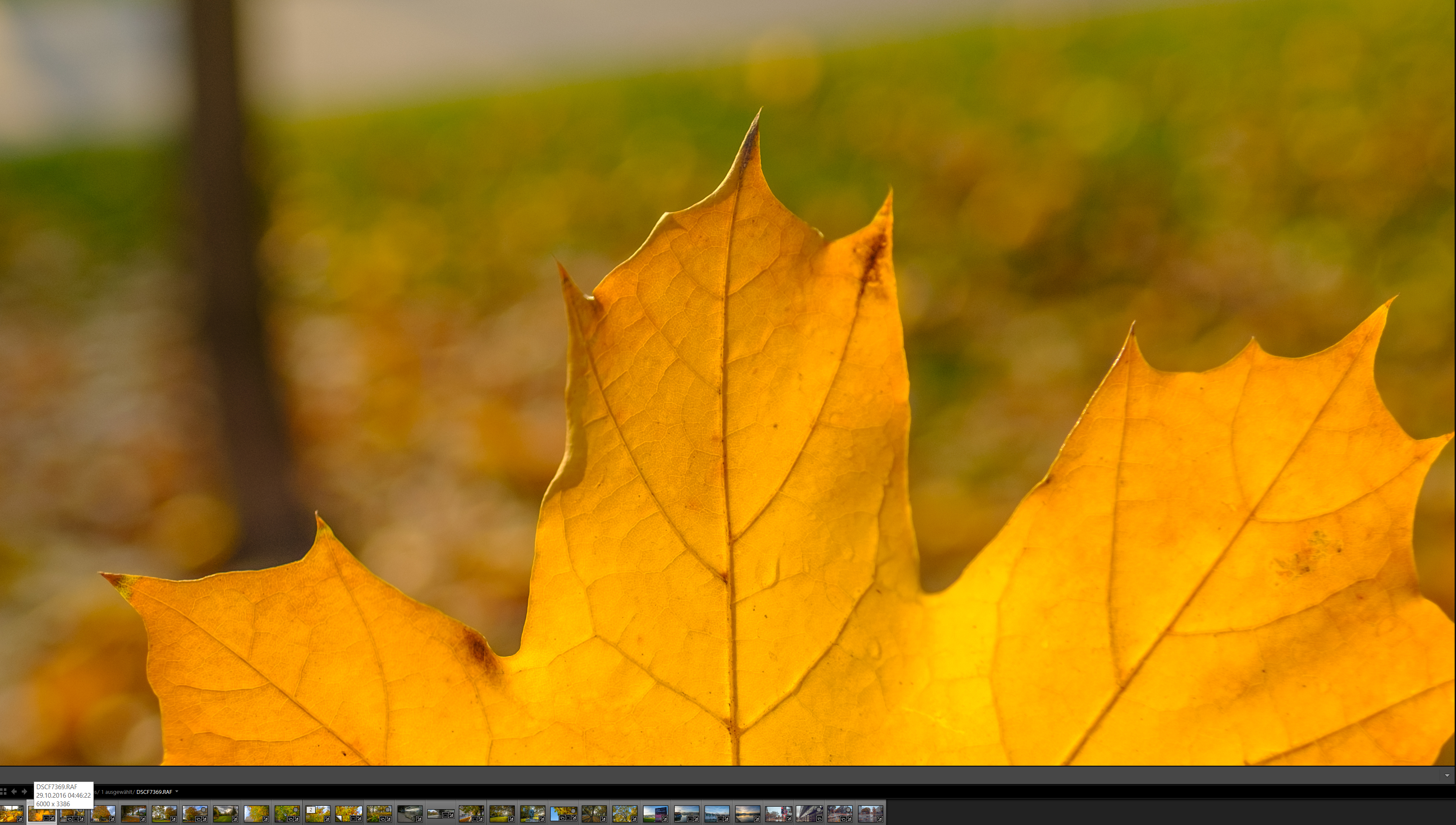 lightroom detail