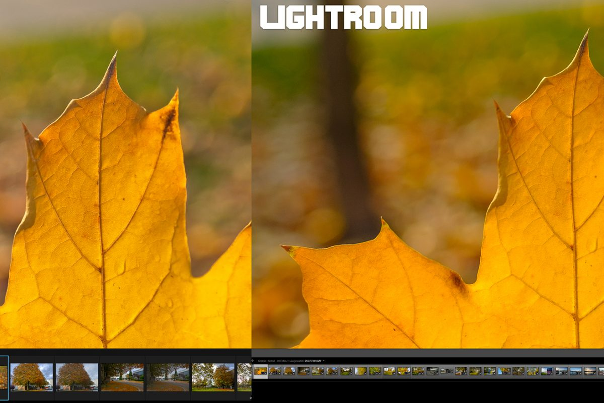 lightroom vs on1 web